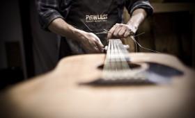 Pawless Guitars